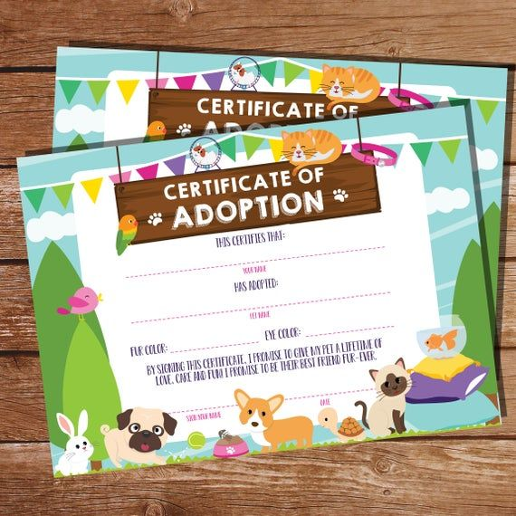 Pet Adoption Party Pet Adoption Certificate Pet Party Birthday Pet Adoption Papers Instant Download Edit With Adobe Reader In 2019 Adoption Papers Adoption Certificate Adoption Party
