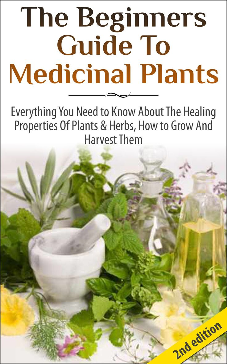 17 best images about inside plants on pinterest diy wedding bouquet bird baths and medicinal - Medicinal herbs harvest august dry store ...