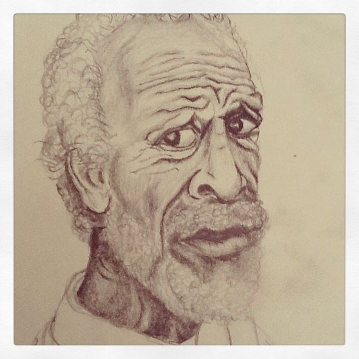 Sr. sharpei - dibujo a lapiz - Veronica Reynal