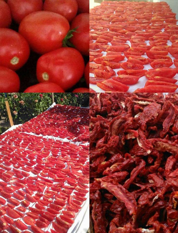 Domatesin bol ve lezzetli, havaların sıcak ve güneşli olduğu bu günlerde domates kurusu yapabilirsiniz. Mevsiminde kuruttuğunuz domateslerle yıl boyunca çok lezzetli kahvaltılıklar, salatalar ve yemekler hazırlayabilirsiniz. Üstelik kurutulmuş domates ta...