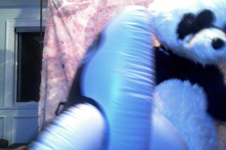 Whale and Panda
