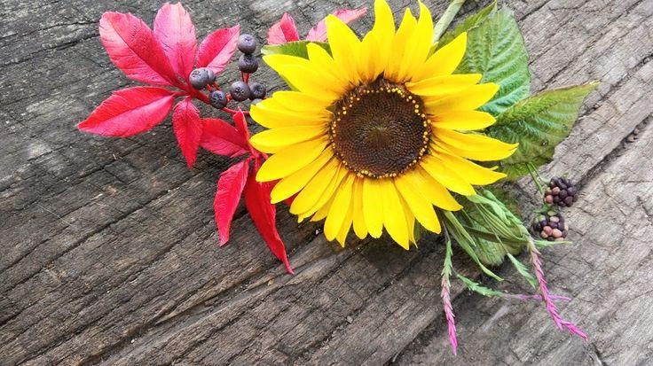 Sunflower sweet bouqet