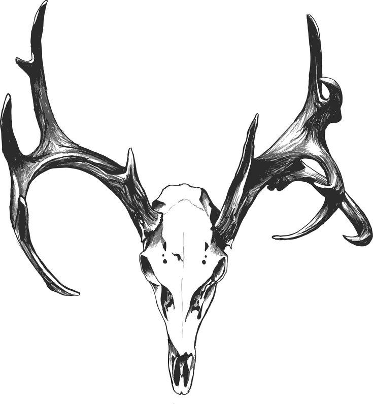 deer skull tattoos tumblr - Google Search