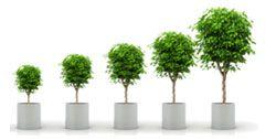 Νέος Αναπτυξιακός Επενδυτικός Νόμος 4146/2013