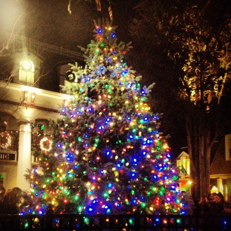 Christmas Lights Jersey: 79 Best Restore The Shore Images On Pinterest