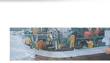 Nuevo Portal del Sector Marítimo Pesquero con el propósito de contribuir a la mejora de las condiciones de seguridad y salud de los trabajadores del mar. La OIT y la FAO estiman que el 7% de las víctimas mortales de accidentes laborales ocurren en la industria pesquera  (unas 24.000 personas al año en todo el mundo), a pesar de que este sector representa menos del 1% de las personas trabajadoras. http://www.insht.es/portal/site/SectorPesquero/