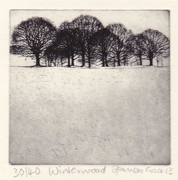 Winter Wood by Pamela Grace
