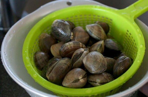 clam stew (jogaetang: 조개탕)