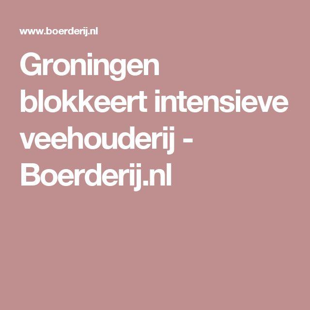 Groningen blokkeert intensieve veehouderij - Boerderij.nl