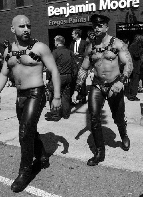Gay bear leather chaps
