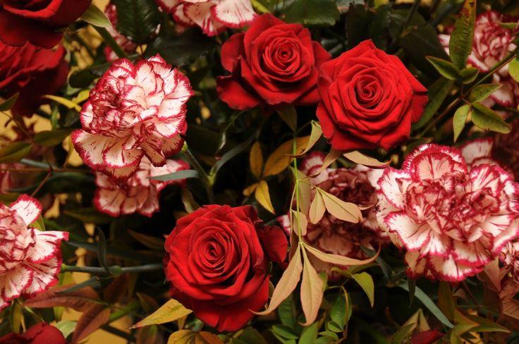 Composizione floreale di garofani e rose nella mostra curata nel 2008 da Giusy Ferrari Cielo www.fiorinellarocca.it