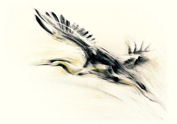 Bliska wszystkim miłośnikom ptaków. Czapla w nowej odsłonie. www.galeriawchmurach.pl