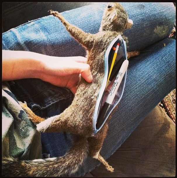 Squirrel Pencil Case, made from road kill, I'm so twisted that this literally made me laugh out loud.