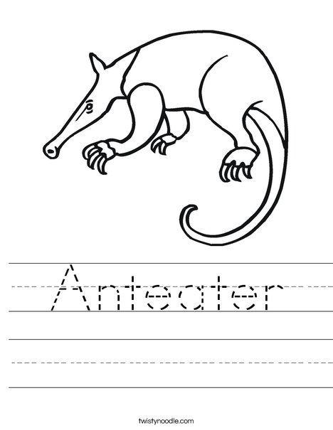 40 best Animals worksheets images on Pinterest | Noodle ...