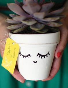 Brighten your dorm with succulents | DIY dorm decor