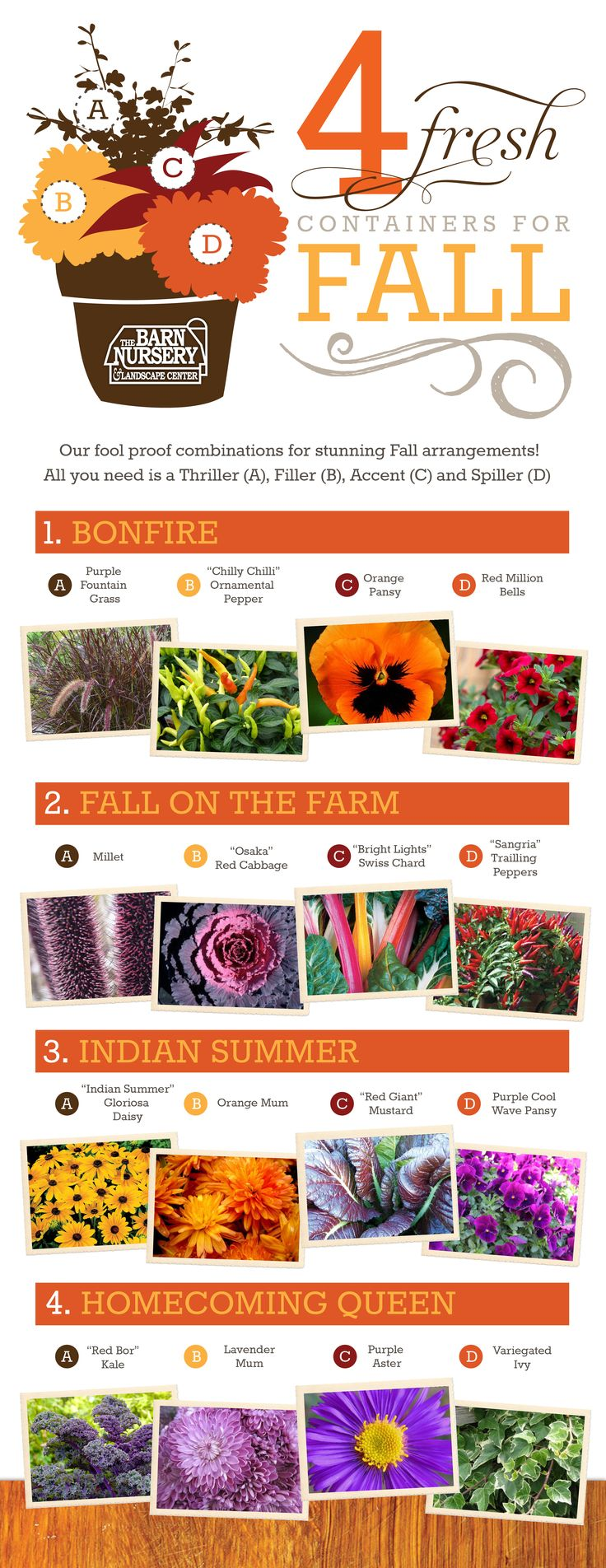 Our favorite Fresh Annual Combinations for Fall!!