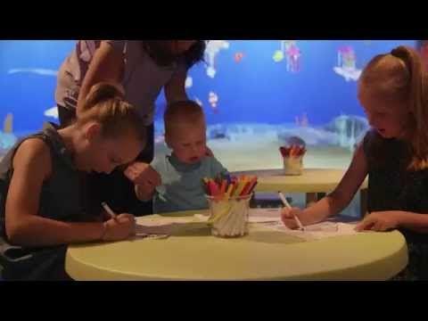 School Holidays   SEA LIFE Melbourne Aquarium