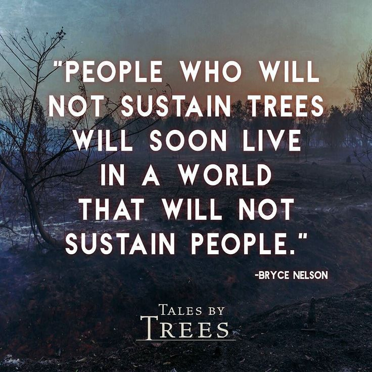#quote #climatechange #sustainability #talesbytrees