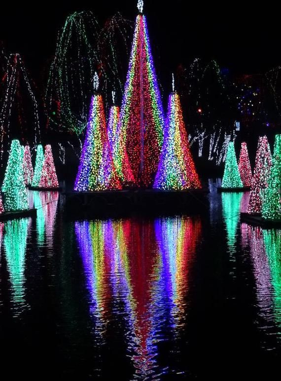Wildlights At The Columbus Zoo And Aquarium Includes An Incredible Light Display Surrounding The Pond Synchronized To In 2020 Columbus Zoo Zoo Lights Columbus Ohio Zoo