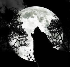 It's a wolf howling at the moon