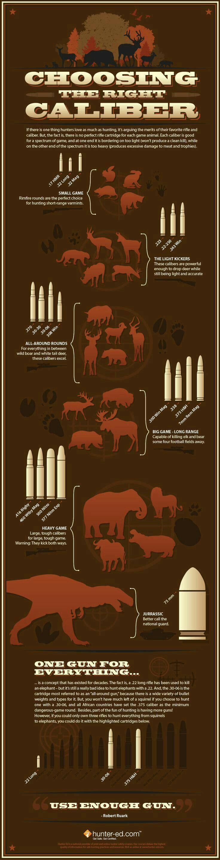 Pour avoir une petite idée des calibres selon les animaux !!