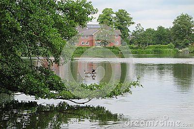Whiteknights lake in Reading UK.