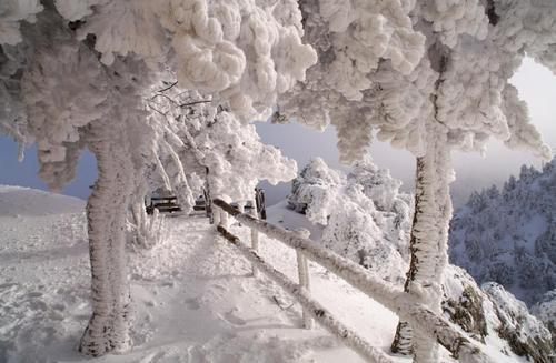 Η Πάρνηθα Αττικής ~ Mt. Parnitha, Attiki by vasilikos    Φωto by vasilikos