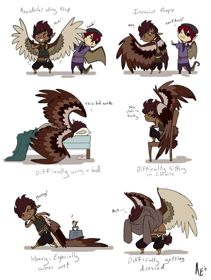 The Impracticalities of Wings by Turtle-Arts.deviantart.com on @DeviantArt