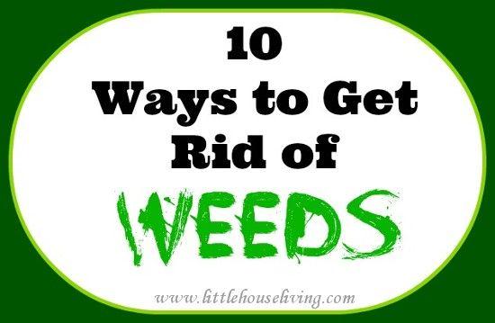 10 Ways to Get Rid of Weeds