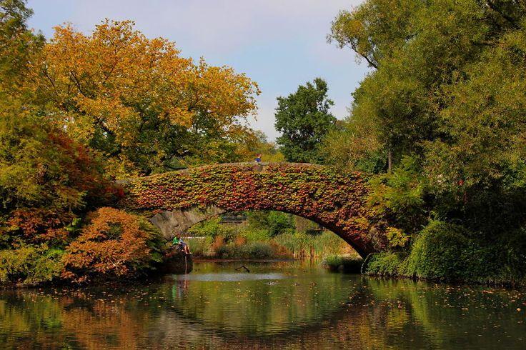 20 ponts impressionnants par leur beauté qui ont traversé les époques