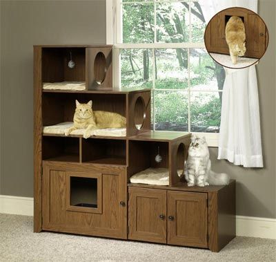 cat furniture bookcase. I think dad is going to build Tobi and Abbi a variation of this!
