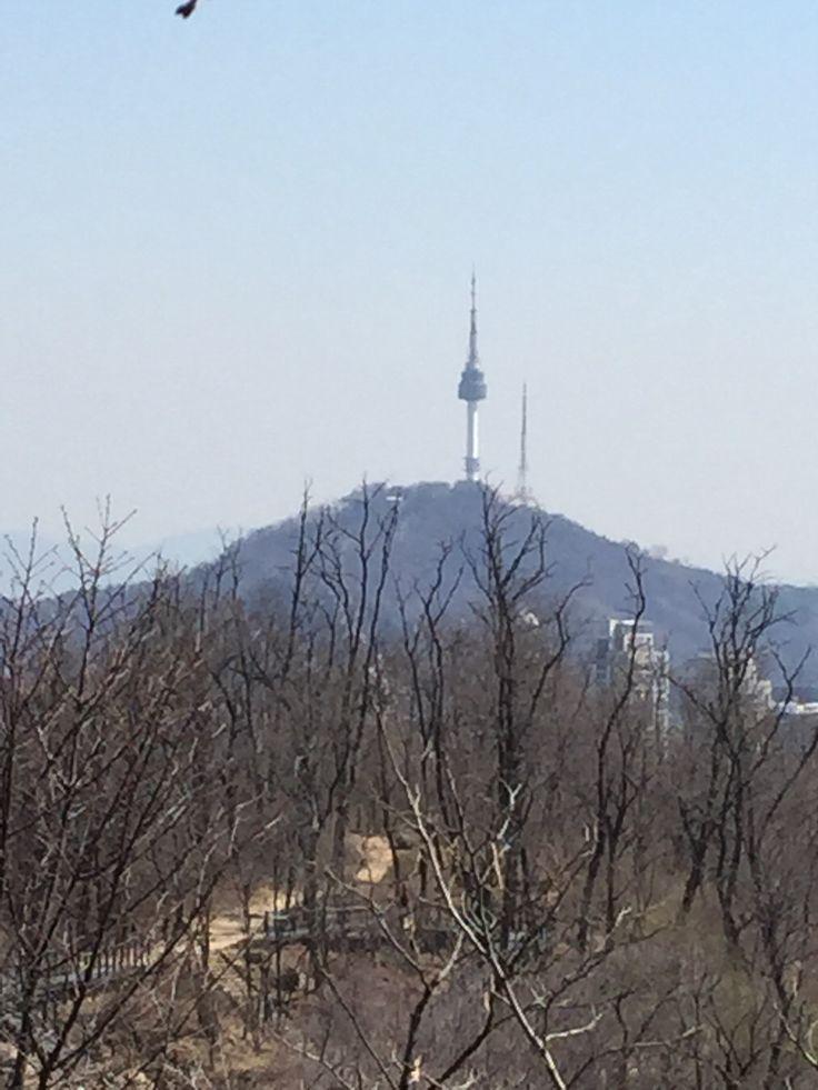 자락길에서 본 서울타워