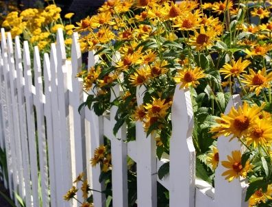 http://www.alaska-fence.com/images/fence-picket-flowers.jpg