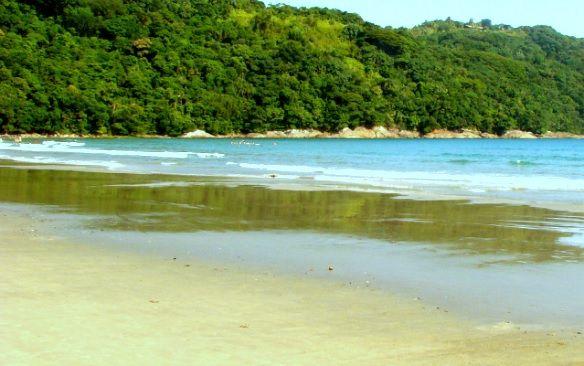 Praia da Baleia - SP
