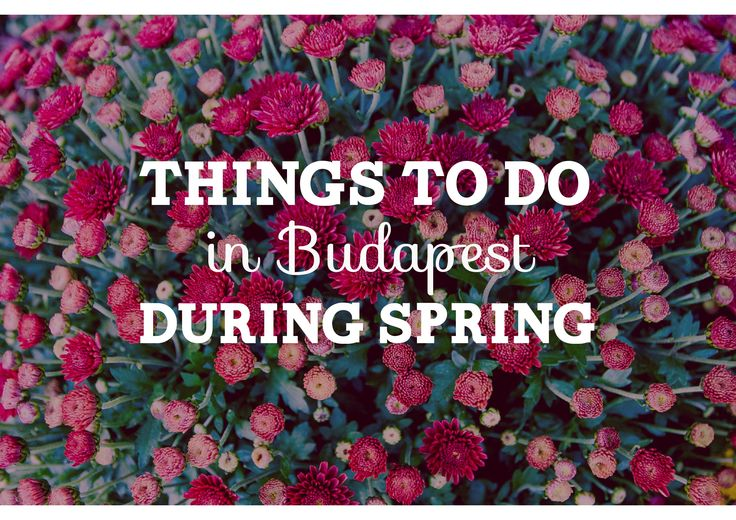 Get the best out of Spring time. Find out what to do during spring in Budapest: http://welovebudapest.com/culture/what.to.see.and.do.in.budapest.this.spring