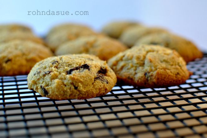 I have been working for months on a yummy, chewy, chocolatey chip cookie that is also low carb but still taste and feels like a real cookie. I have finally created one that is perfect for me! But…