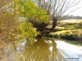 Pine Bank 111 Pine Bank Drive, Goulburn, NSW 2580