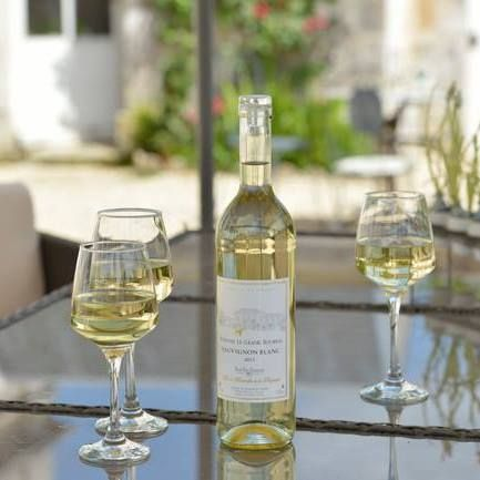 Wine and Cognac tasting