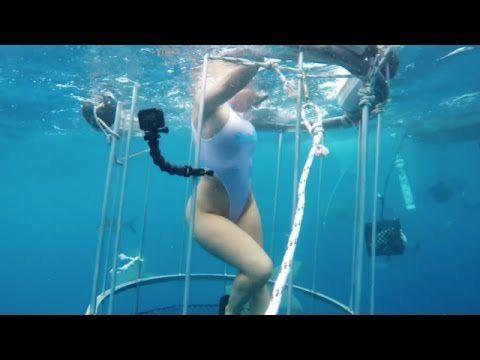 Porn Star Molly Cavalli Bitten By Shark – Video