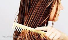 La perte de cheveux est un problème fréquent de nos jours. Comme les cheveux sont considérés comme une parure ou un atout qui embellit notre apparence physique, la calvitie ou les cheveux fins et clairsemés sont un problème que beaucoup veulent corriger rapidement. Certains des facteurs courants qui contribuent à la perte de cheveux sont …