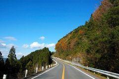 高野山への参拝にはぜひ高野龍神スカイラインを通るコースで行ってくださいね 高野山と龍神温泉 を結ぶ全長42.7kmの山岳道路でブナなどの原生林が両側に広がっているから紅葉シーズンはとっ ても綺麗 私もよく車で通ることがあるけどここの秋の景色は本当に絵になりますよ (o) tags[和歌山県]