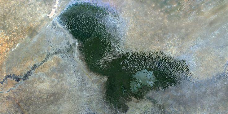 Lake Chad, Africa - PlanetSAT satellite image