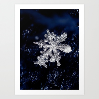 #snowflakes #macro   Winter Joy III Art Print by Marisa M. Johnson