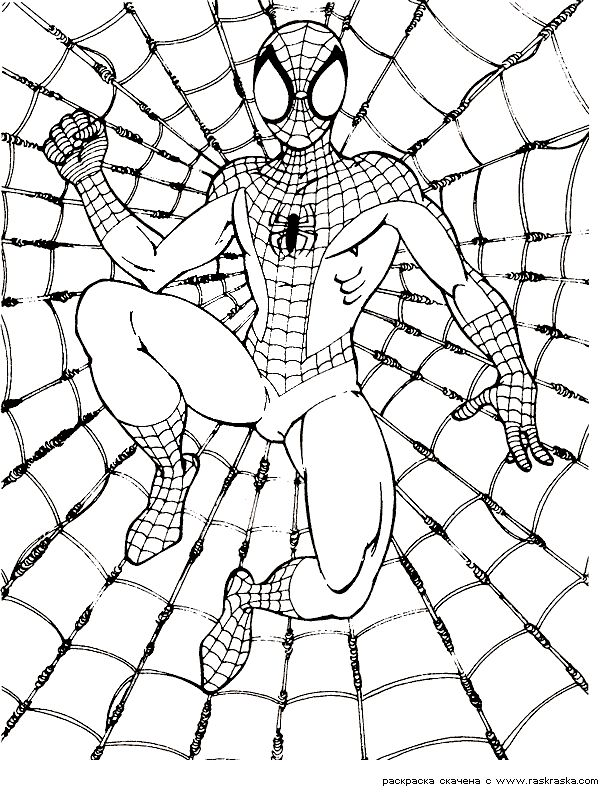 SpiderMan coloring pages 1 / SpiderMan / Kids printables coloring