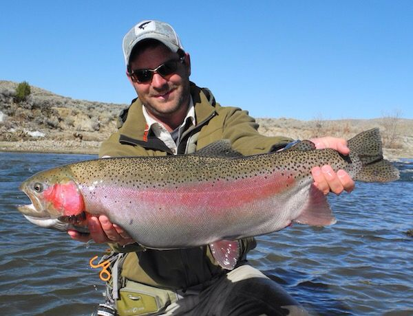 15 best north platte wyoming colorado images on for Wyoming fly fishing