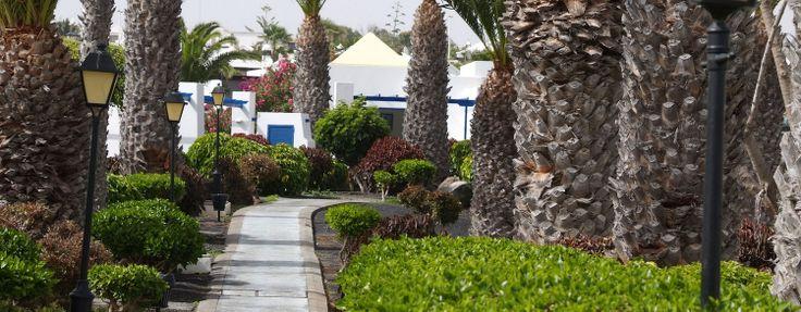 Todo incluido en Lanzarote