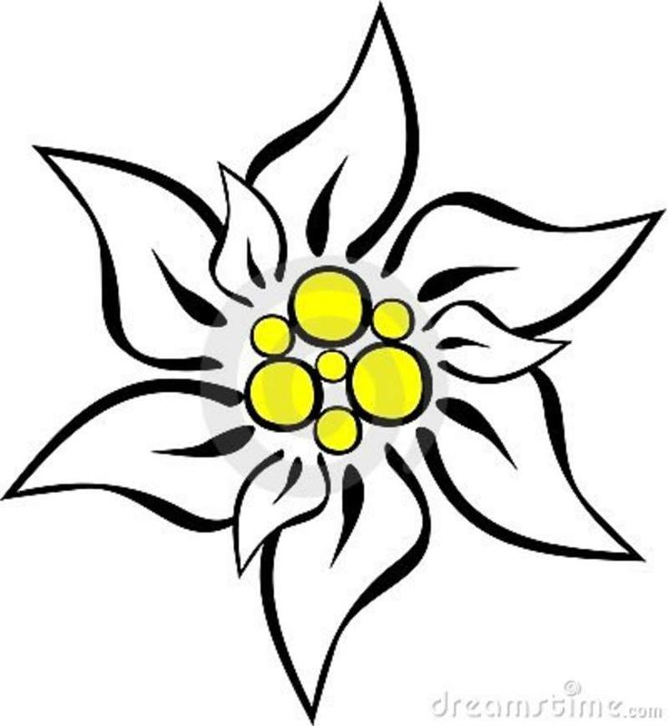 Edelweiss tattoo inspiration. For my mom because she sang me that song when I was little.