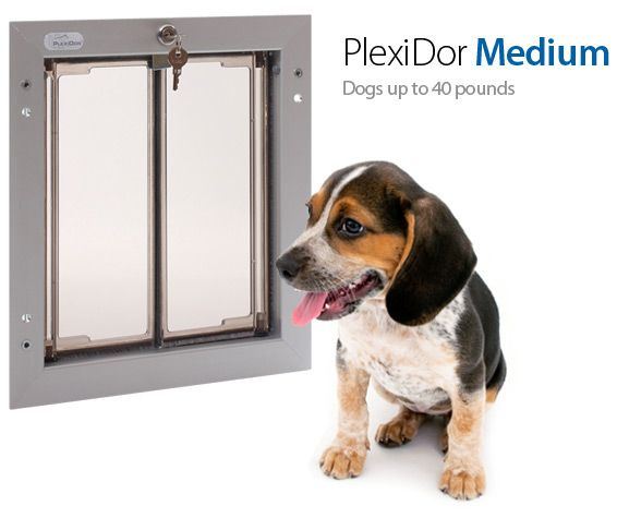 49 Best Images About Dog Doors Our Products On Pinterest