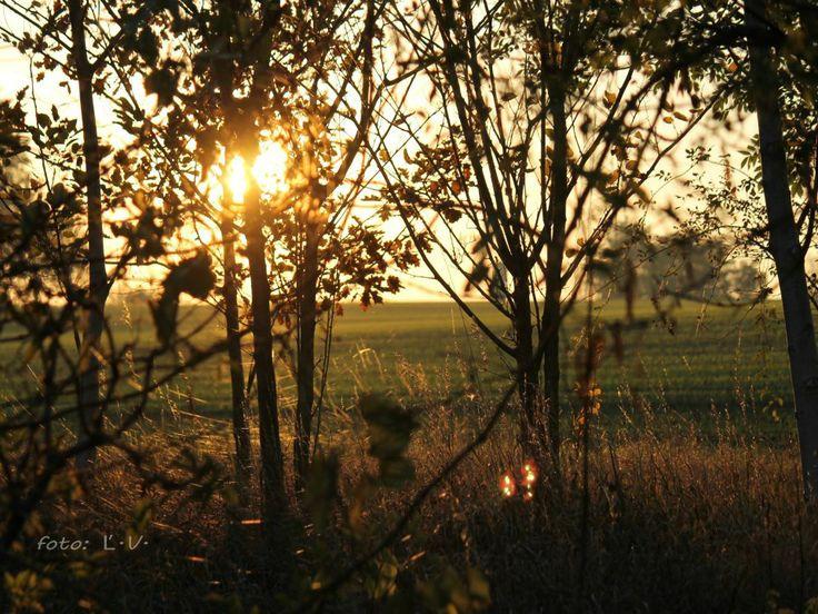 Západ slnka nad poliami