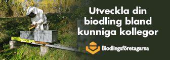 Alltombiodling.se – Allt om biodling
